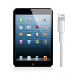 Riparazione DOCK RICARICA per iPad Mini