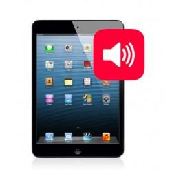 Riparazione ALTOPARLANTE per iPad Mini Retina