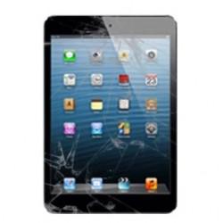 Riparazione Vetro Rotto iPad Mini Retina